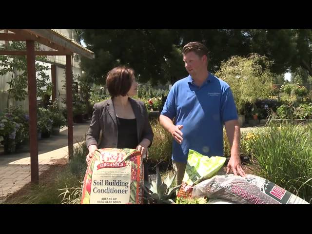In the Garden: Drought Tolerant Yard