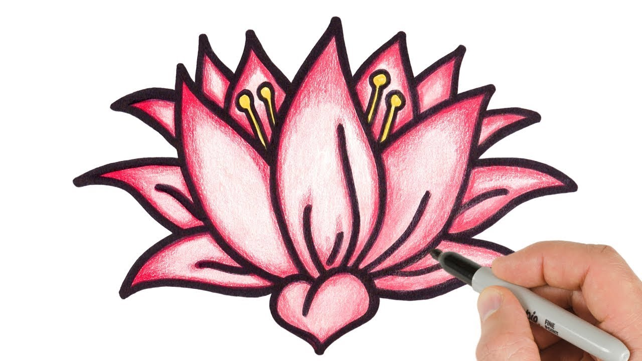 How To Draw Lotus Flower Step By Step Easy Drawing For Kids And Beginners Youtube