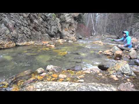 Pocket Water Urban Fishing: Big Cottonwood Canyon Lance and An