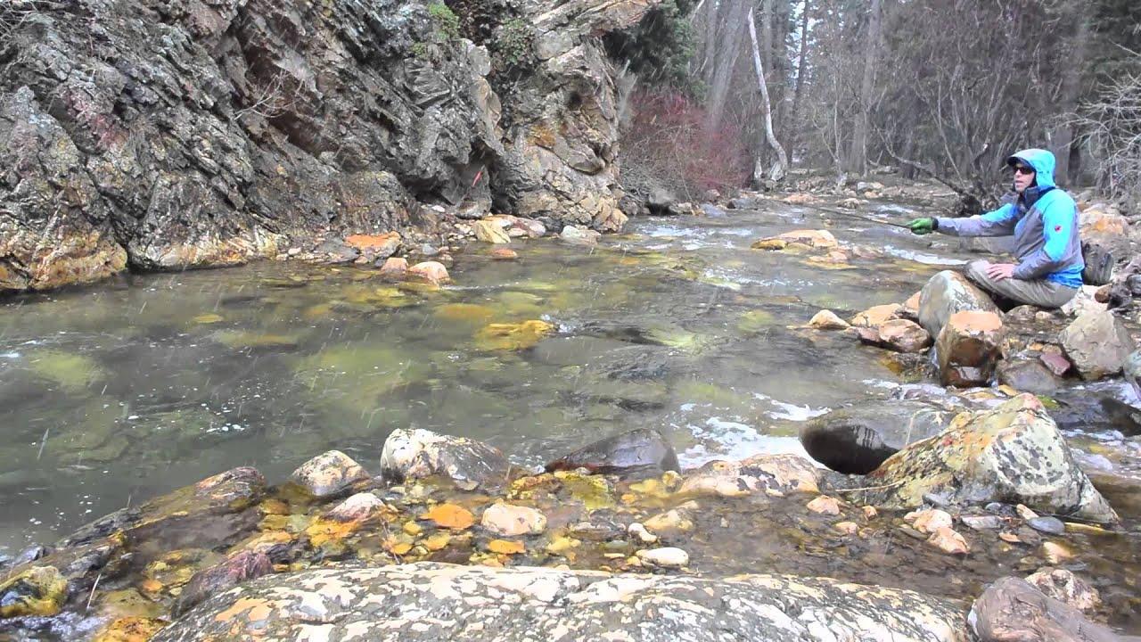 Pocket water urban fishing big cottonwood canyon lance for Fish springs nevada