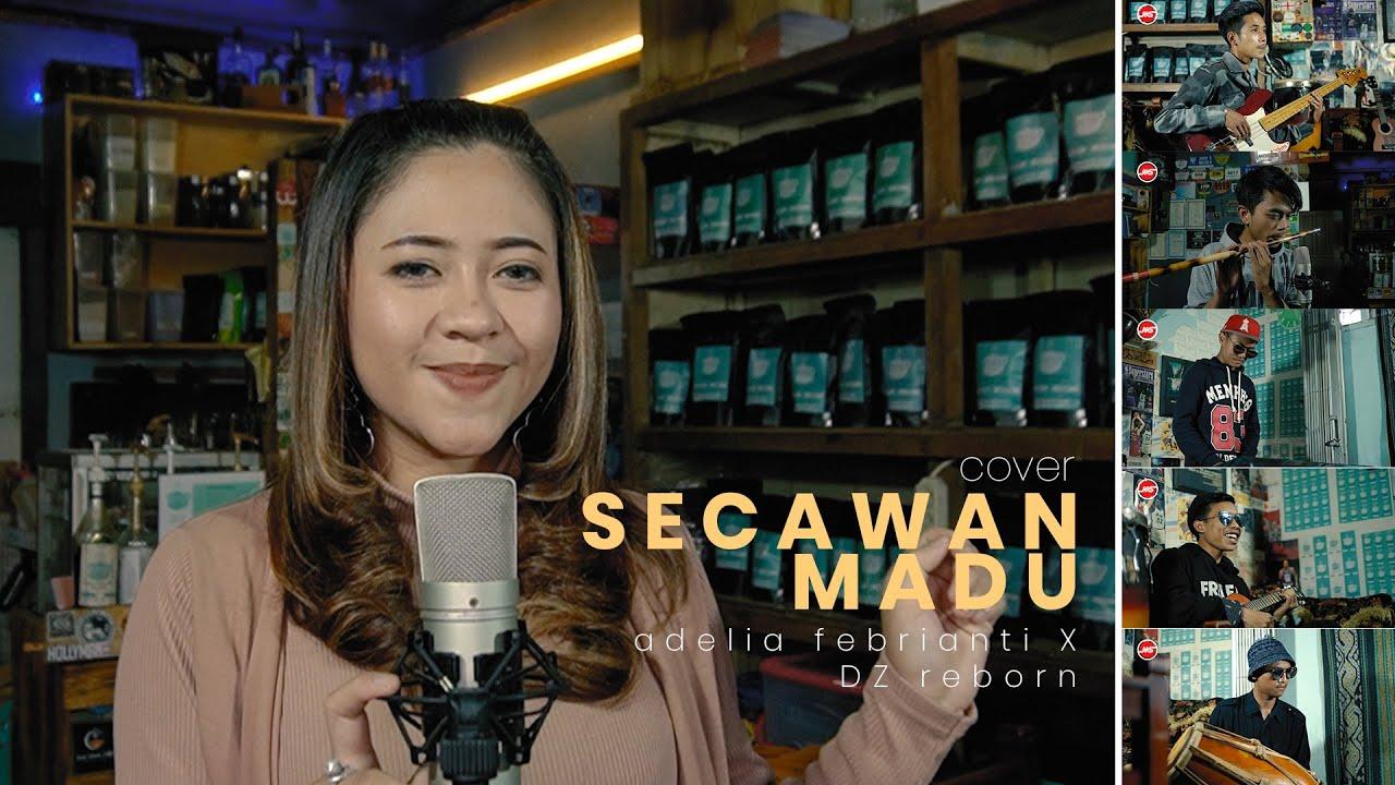 ADELIA FEBRIANTI Feat. DZ REBORN - SECAWAN MADU (Cover Music Video)