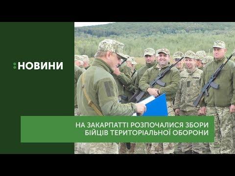 Навчальні збори бійців територіальної оборони розпочалися на Закарпатті