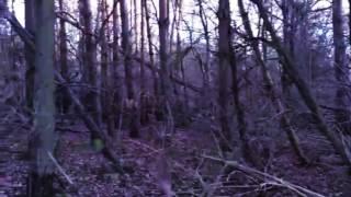 clown in the woods teaser trailer