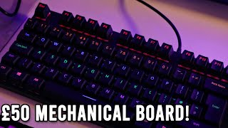 Mechanical keyboard on a BUDGET! Rapoo V500Pro Review