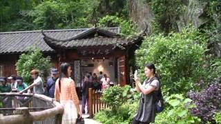 [KBS 세상은 넓다]  최 병문 중국의 무릉도원, 장가계