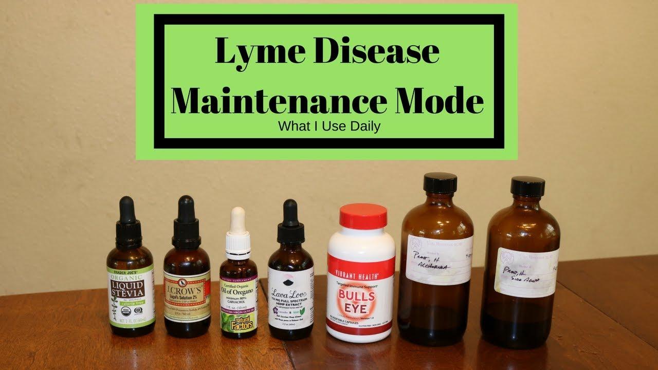 Lyme - Maintenance Mode