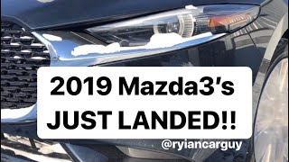 2019 Mazda3 JUST LANDED!