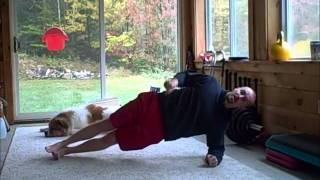 How to do the Side Plank Exercise