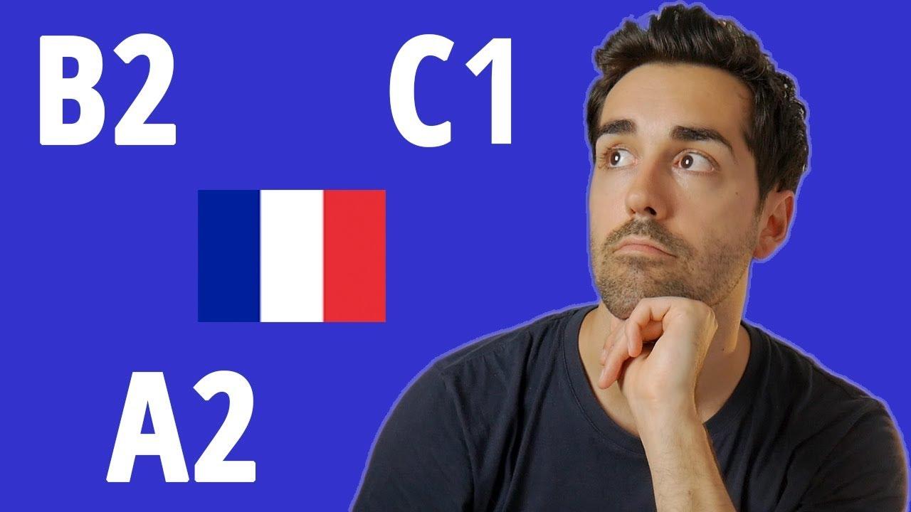 Download Quel est votre niveau de français ?