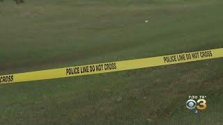 Remains Of Child Found On Smyrna Baseball Field, Police Say