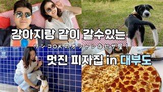 【Vlog】대부도의 멋진 피자가게🤩韓国にある愛犬と行ける超!オススメピザ屋さん🍕