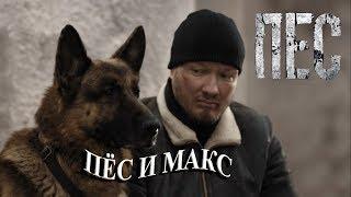 Пёс и Макс
