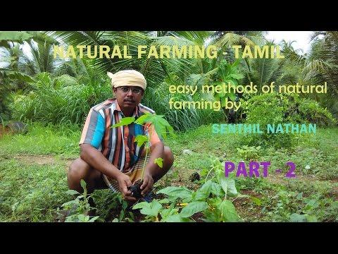 Natural Farming in Tamil part - 2