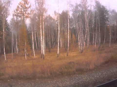 Между Тайшетом и Нижнеудинском, Иркутская область #3