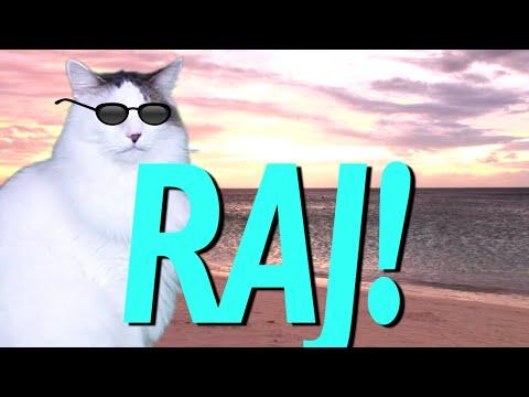 Happy Birthday Raj Epic Cat Happy Birthday Song Youtube