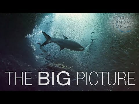 Thumbnail: The Big Picture on Oceans