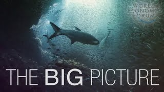 The Big Picture on Oceans