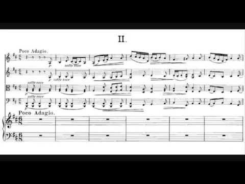 Wilhelm Berger - Piano Quintet in F minor, Op. 95