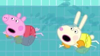 Peppa Pig Português Brasil | Transporte | HD | Desenhos Animados