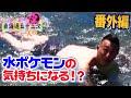 【番外編3】川に入れば水ポケモンは見つかるのか? - 東海道五十三次 1人旅