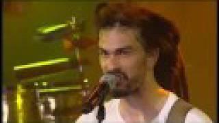 Moonraisers - Hotel California - Live - Paleo 08