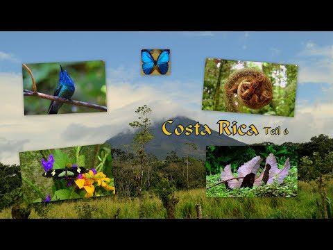 Costa Rica Teil 6 - der Vulkan Arenal