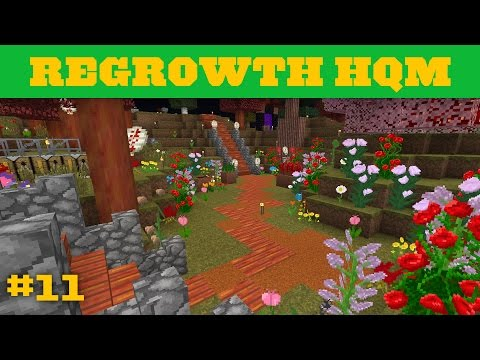 Regrowth HQM - Diamond seeds and Eggs YUM! - 11