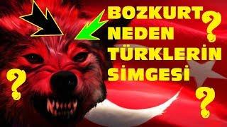 Gambar cover BOZKURT NEDEN TÜRKLERİN SİMGESİDİR? İŞTE CEVABI !!! (TÜRK TARİHİ GÖKBÖRÜ)