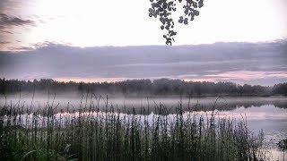 Рыбалка на безлюдном озере - чудесный отдых для души... #224