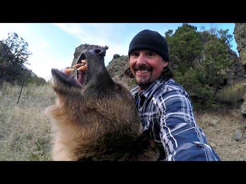 Thumbnail: GoPro: Man and Grizzly Bear - Rewriting History