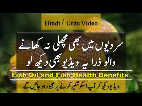 Fish Oil and Fish Health Benefits || Health Information and Cooking Tips in Hindi / Urdu Video