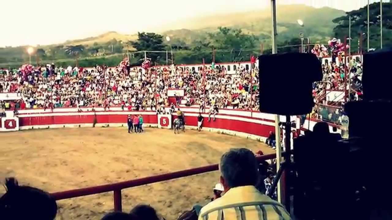 PATAS BLANCAS Y CABALLO BAYO PLAZA DE TOROS GUADUAS CARLOS ESPINOSA EL  POTRILLO - YouTube