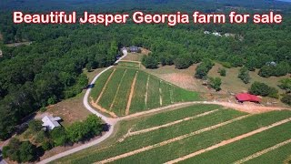 Beautiful 39 Acre Jasper Georgia Farm For Sale - Patsy Carver