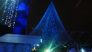 В Литве город Вильнюс новогодняя ёлка