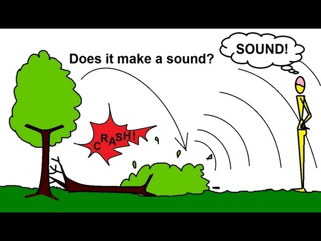 Physics Mechanics Sound And Sound Waves 2 Of 53 If A Tree Falls In The Forest Youtube 'say you fall down and nobody is around to hear it. sound waves 2 of 53 if a tree falls