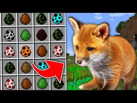 Вопрос: Действительно ли лиса в природе хитрее других зверей, или это миф?