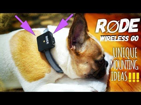 RØDE WIRELESS GO - UNIQUE Ways To Capture Audio!