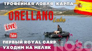Трофейная рыбалка на озере Орельяно вторая экспедиция выпуск 6
