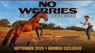September NWC Preview: Academy Horse Training Diary