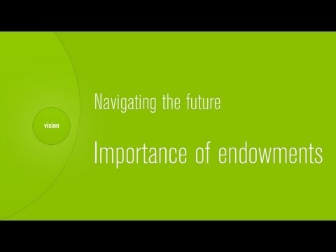 The Importance of Endowments