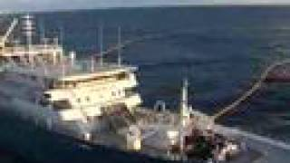 Popular Videos - Fishing vessel & Tuna
