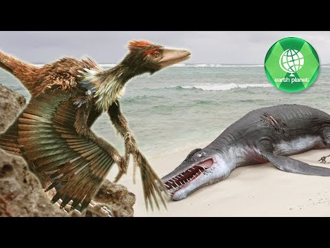 Dinosaurs 4K | ARCHAEOPTERYX - The very first Bird | Dinosaur video | NEW PREHISTORY