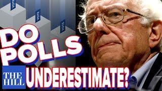Panel: Do polls consistently underestimate Bernie Sanders?