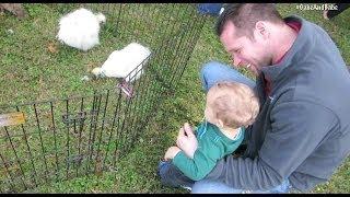 Petting Zoo ~ Vlogtober 27, 2013 ~ GabeBabeTV