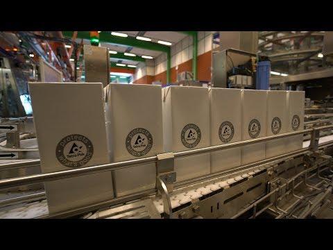 Like Clockwork: Tetra Pak Keeps Food And Drink Flowing Safely