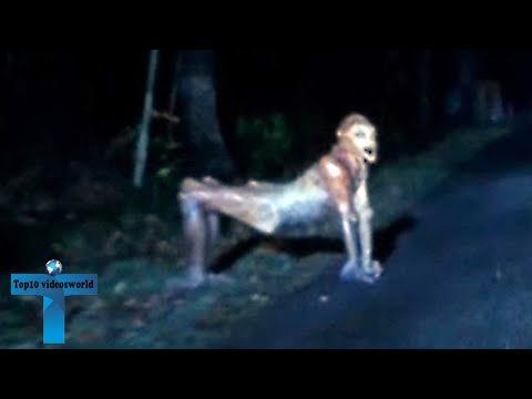 Top 10 Mysterious Encounters Caught On Dashcam