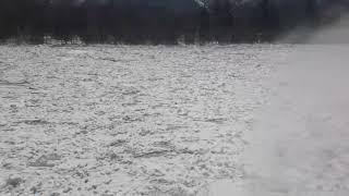 Абакан вскрылся ото льда