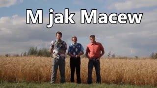 Kabaret Malina - M jak Macew #4