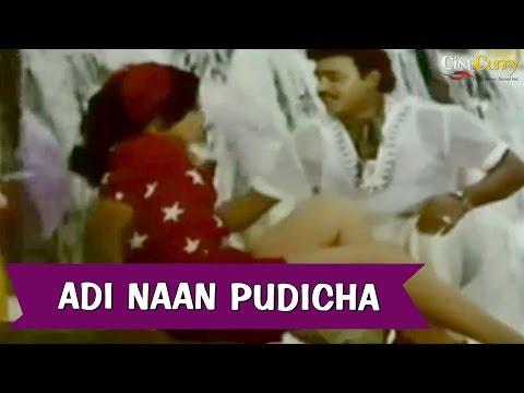 Adi Naan Pudicha  Rasukutti  Bhagyaraj, Aishwarya