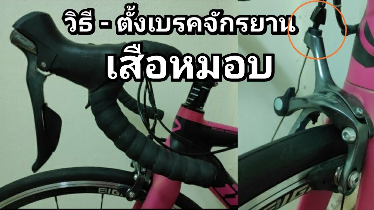 วิธีตั้งเบรคจักรยาน : เสือหมอบ